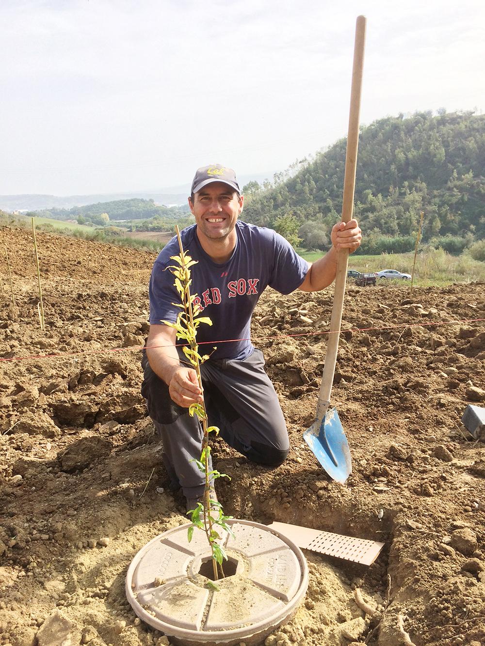 Arnout Asjes (Arborist Land Life Company)