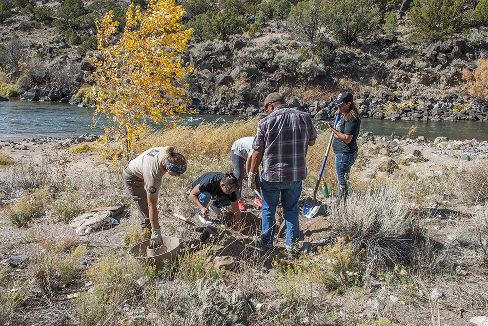Together vets and students planted approximately 30 cottonwood trees and more than 500 milkweed plants