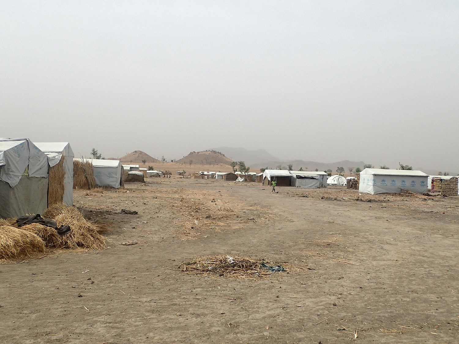 Trees will be planted in and around the camp, providing shade and income for the inhabitants