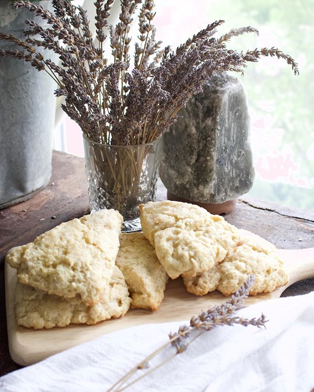 DF Lavender Lemon Scone recipe is up on the blog! Fresh flavors for a springtime baked treat without the dairy and with way less sugar than the average scone. Click the link below for the recipe.