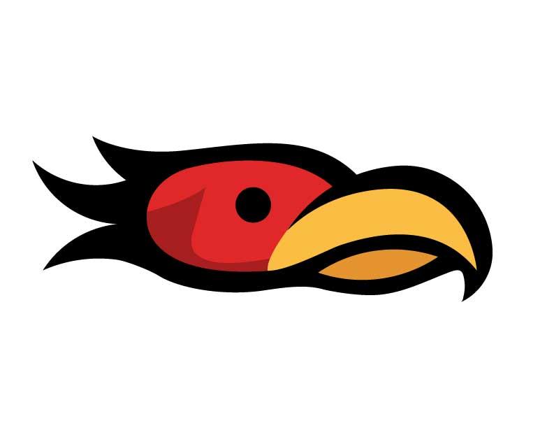 Phoenix Logo (Concept)