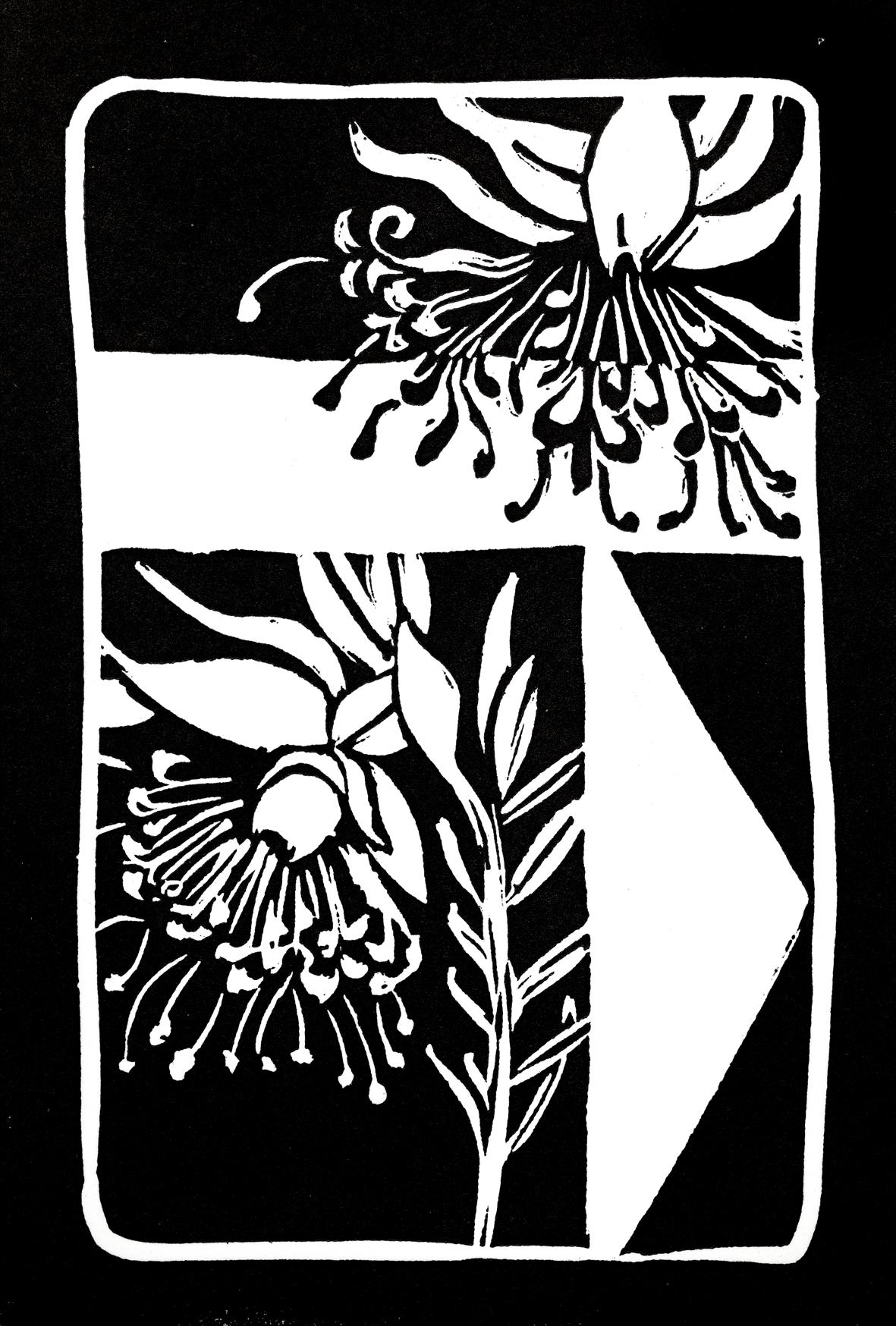 Daled for service  Flower: Spirit Faces  (Pimelea sp.)