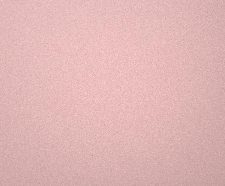 Venetian Pink L221