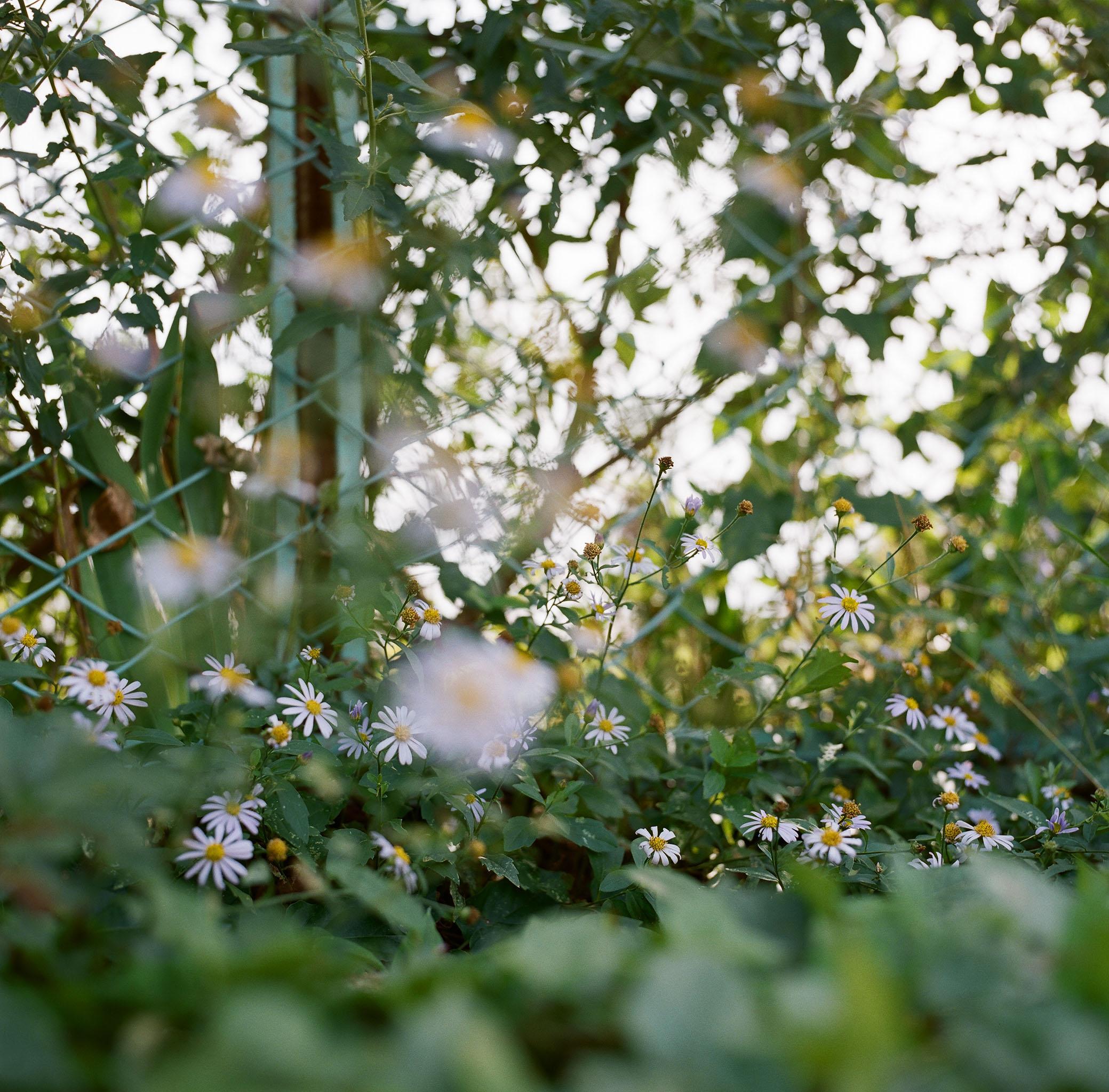 6.NAKAMURA_KENTA.jpg