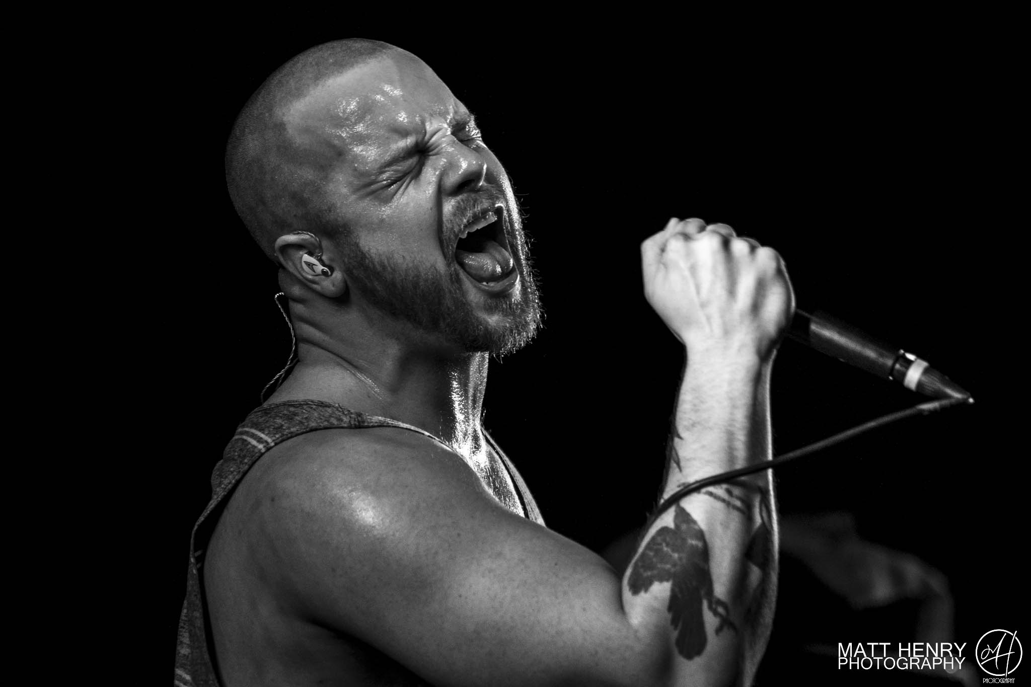 PROTEST THE HERO - 19th April 2017The Kings Arms Tavern, Auckland, New Zealand.Review by Mark Derricutt. Photography by Matt Henry Mendonca.