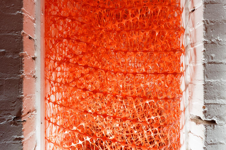 Holly Rowan Hesson,  Control , 2017, barrier mesh, dimensions variable