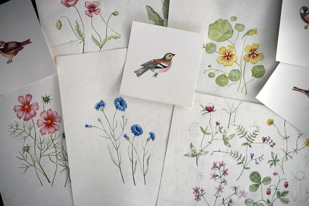 Akvarellskisser till tapetkollektionen Morgongåva.