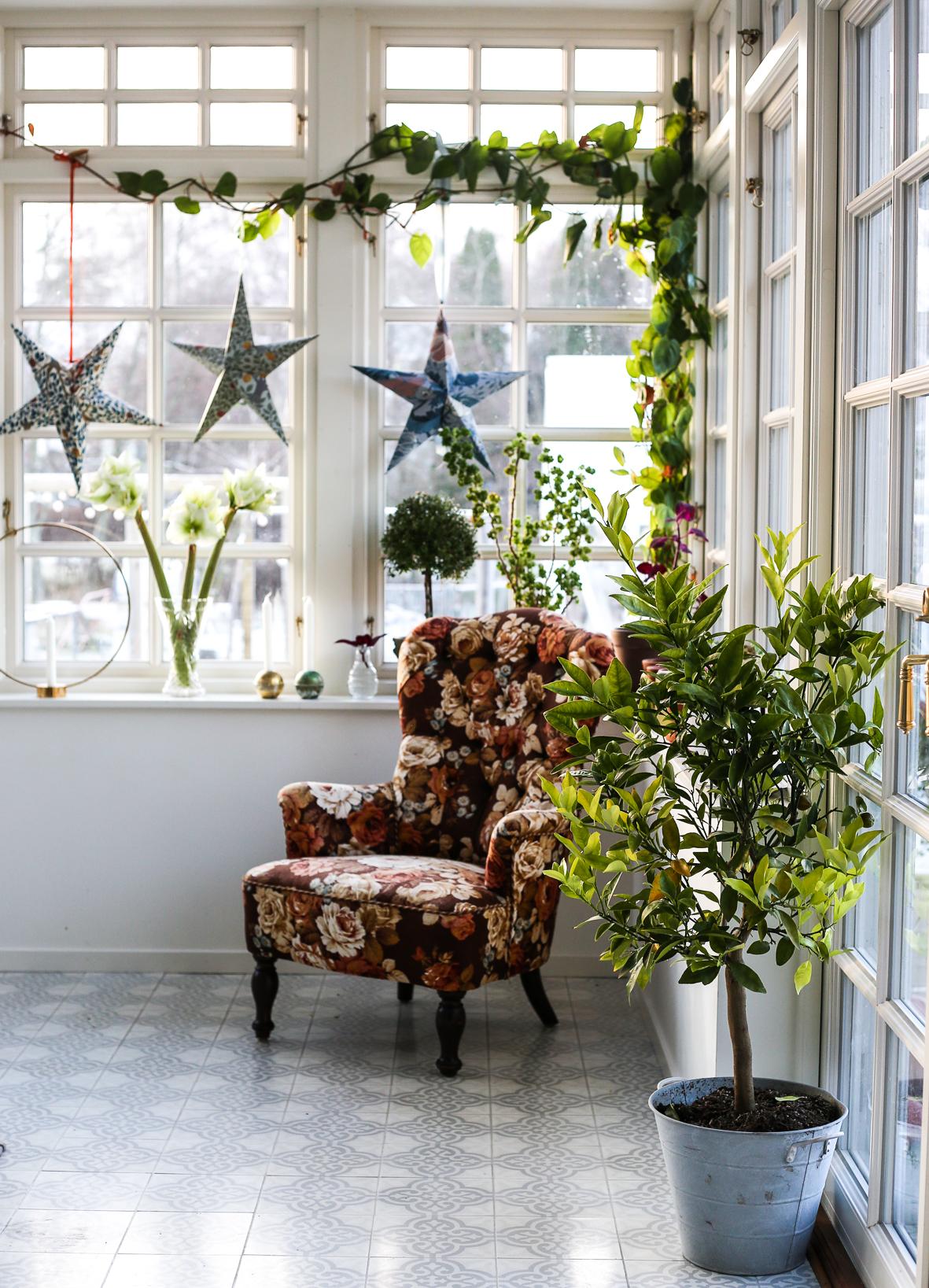 Julstjärna_tapet_HannaWendelbo-18.jpg