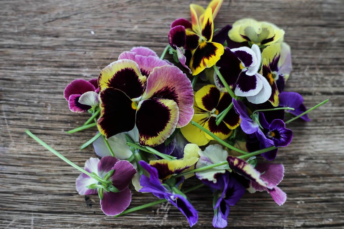 Blomsterkakor_HannaWendelbo-13.jpg