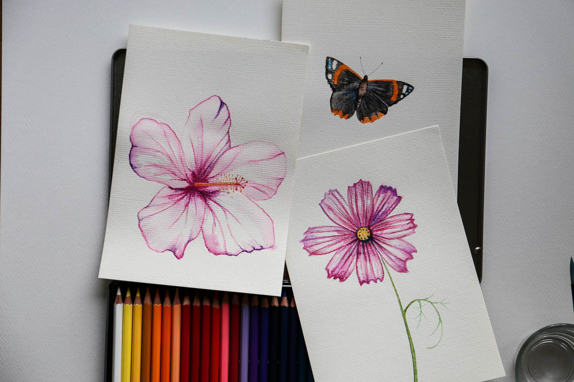 HannaWendelbo_akvarellpennor_AdLibris-1.jpg
