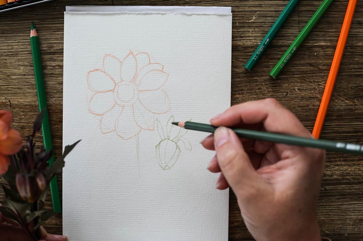 HannaWendelbo_akvarellpennor_AdLibris-10.jpg