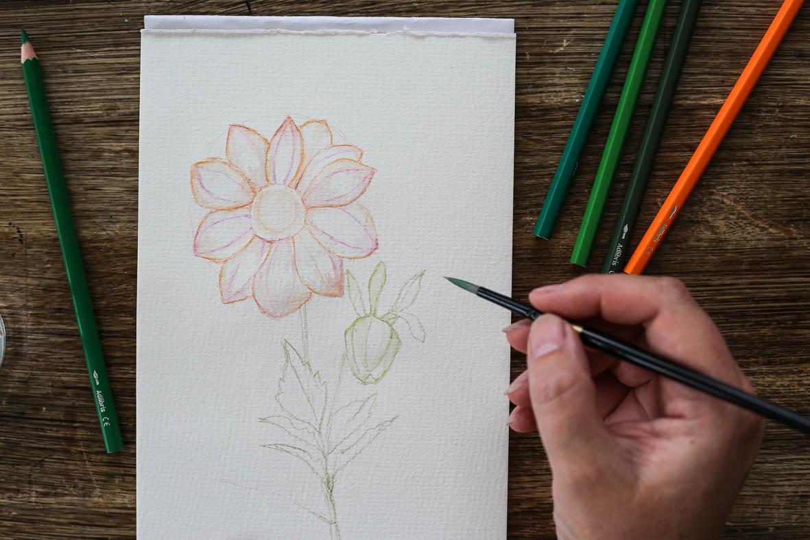 HannaWendelbo_akvarellpennor_AdLibris-14.jpg