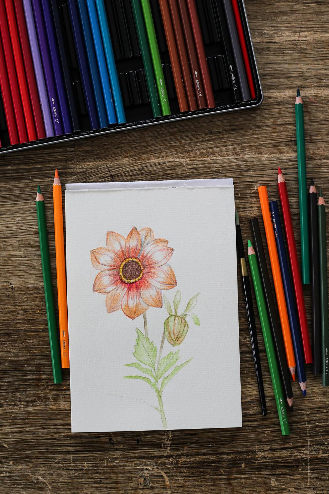 HannaWendelbo_akvarellpennor_AdLibris-20.jpg