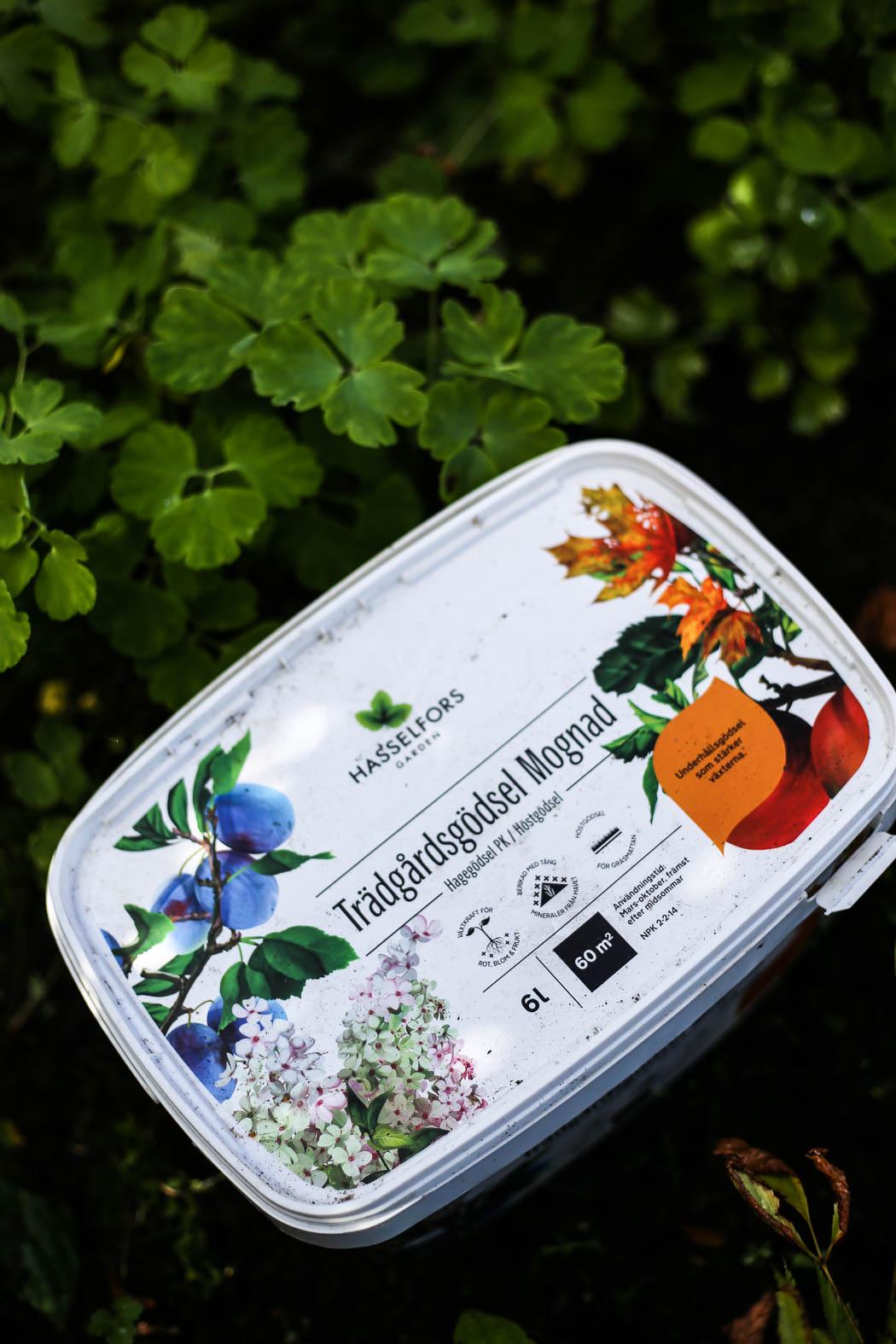 Höstfix-i-trädgården-HannaWendelbo-Hasselfors-30.jpg