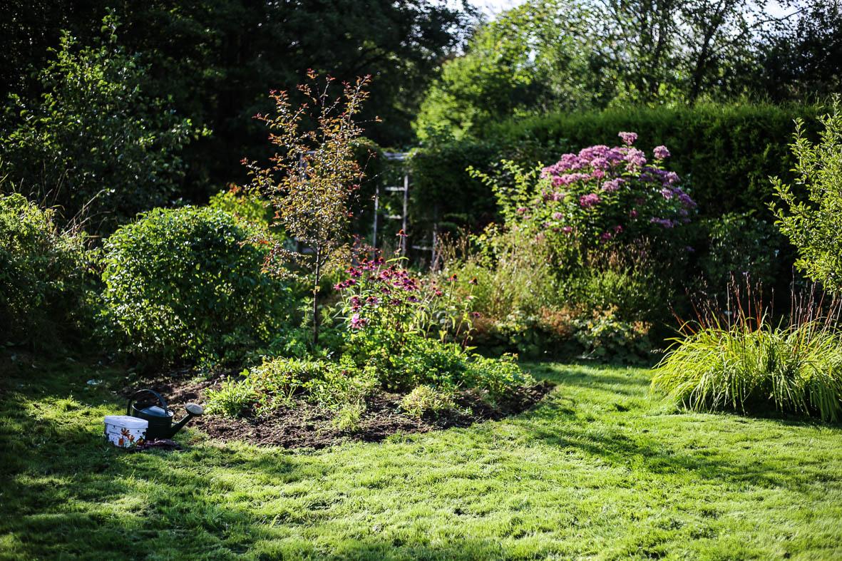 Höstfix-i-trädgården-HannaWendelbo-Hasselfors-43.jpg