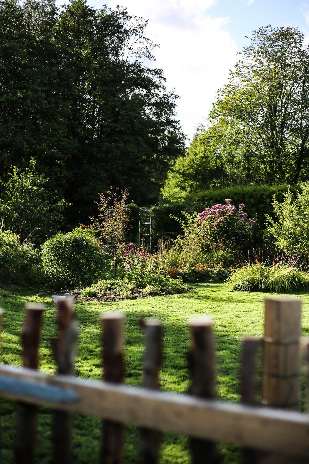 Höstfix-i-trädgården-HannaWendelbo-Hasselfors-46.jpg