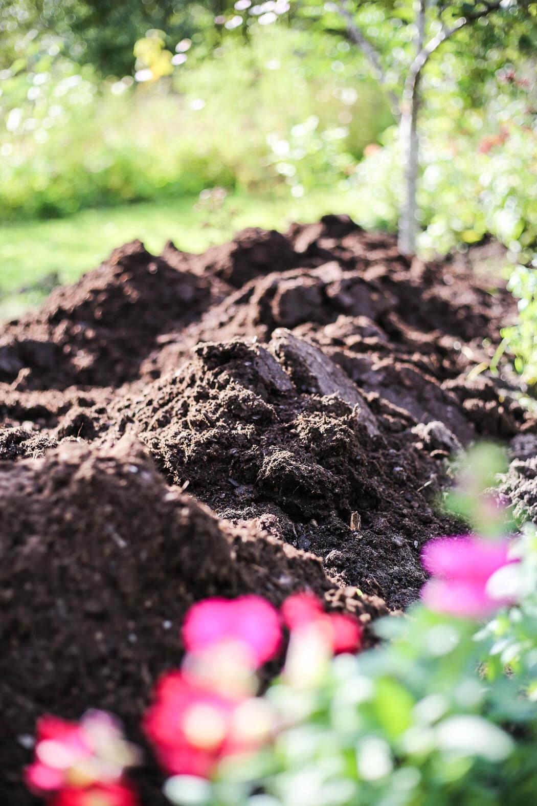 Underbar textur på jorden i rabatten, här kommer det att växa bra!