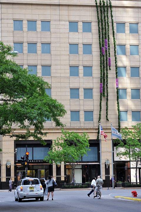 8 stories of Hydrangea and Vine Park Hyatt Chicago