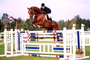 Eveline mit Cavalieri XX - Aesch bei Neftenbach 2001