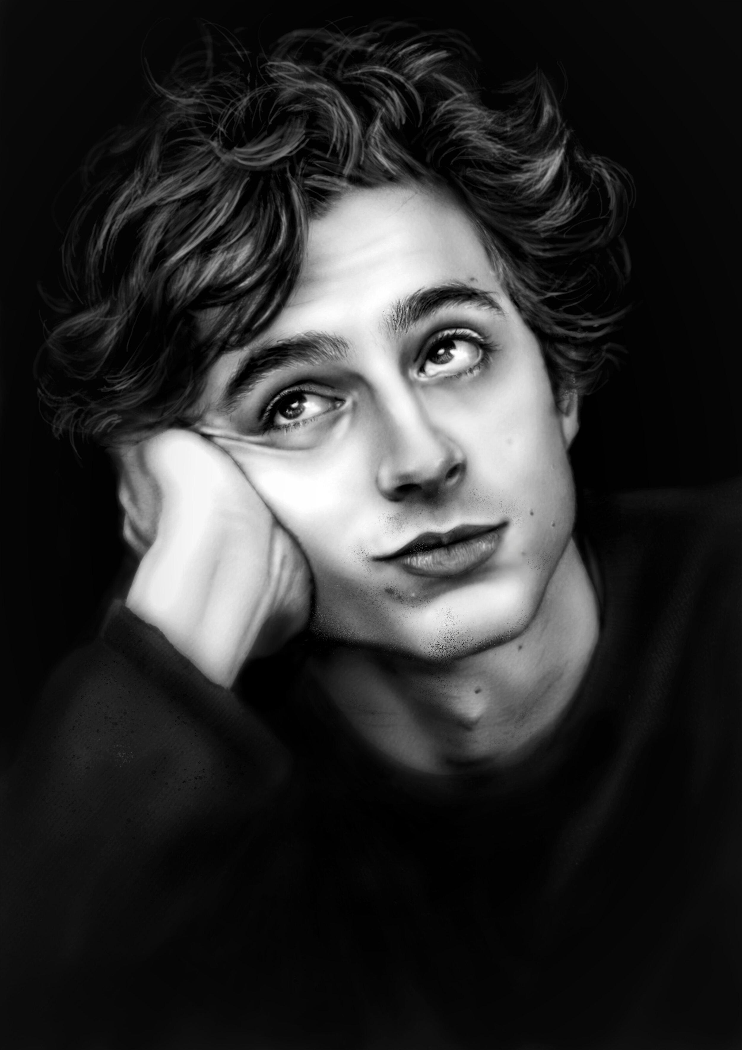 Timothee Chalamet Portrait