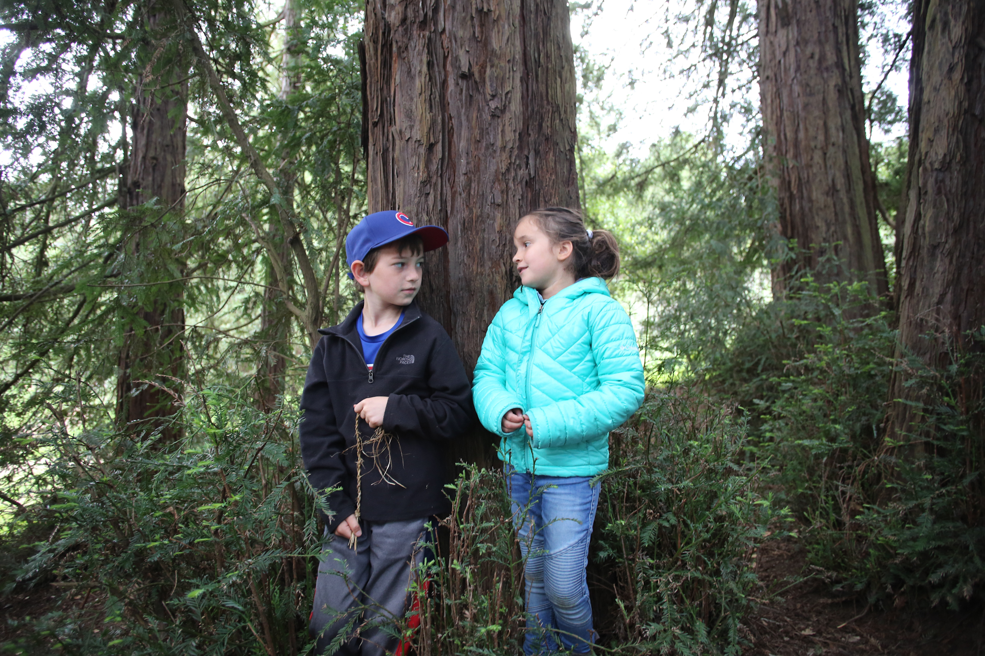 Beginning in January, Wilderness Torah's B'Hootz Program will be available for our kids, K-5.