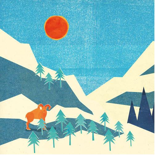 Astrid Weguelin Illustration