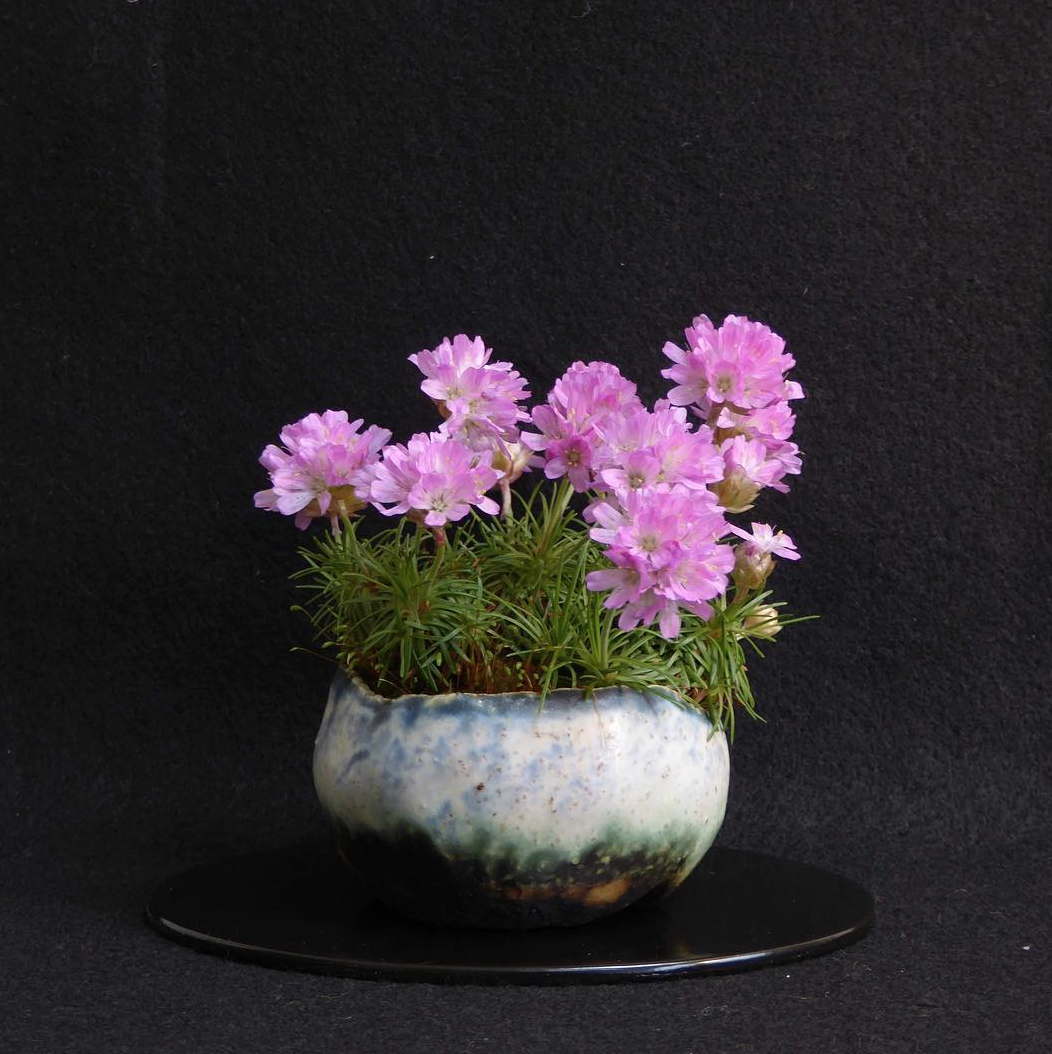 Christine Beresford Ceramics