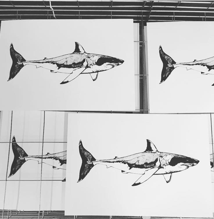 Project Fish