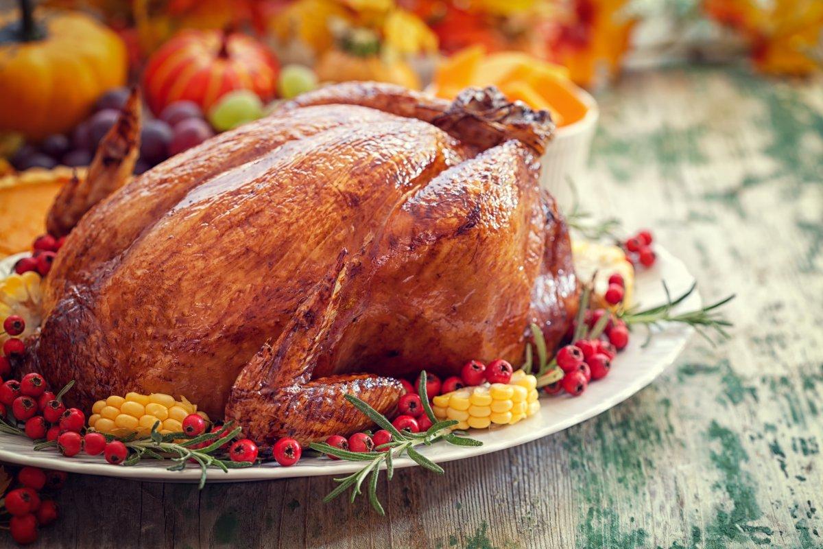Project Turkey