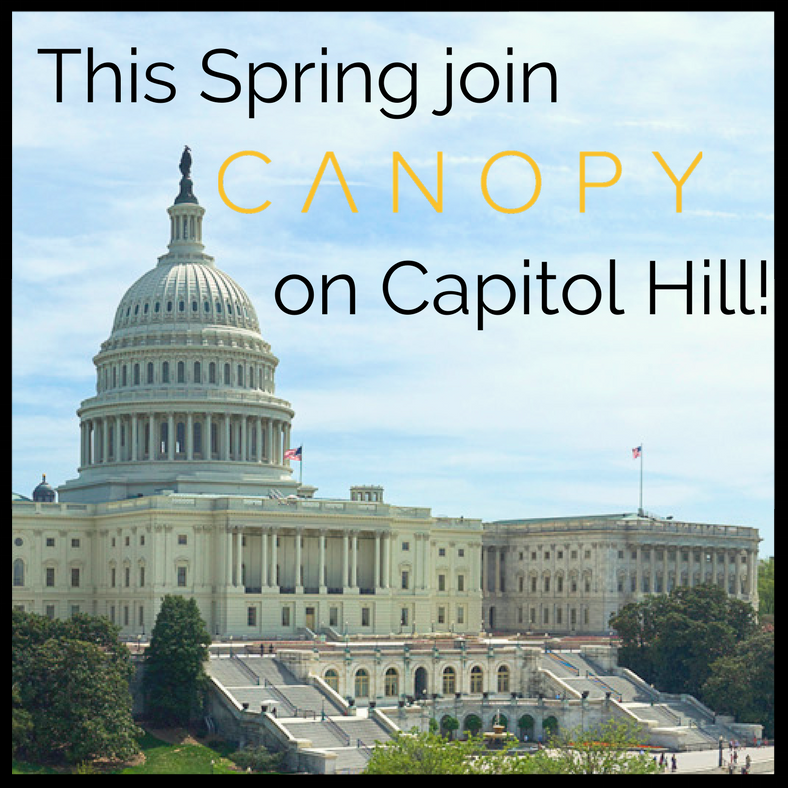 Canopy on Capitol Hill 3.png