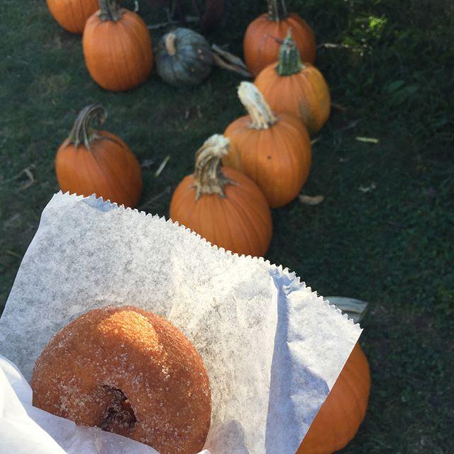 Donuts, apples, pumpkins sheep and ...bourbon.