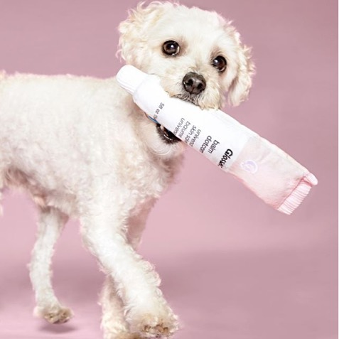 Two brilliant brands, @glossier and @bark have joined forces to release perhaps the most millennial-esque batch of dog toys ever. Cult fave products like boy brow and balm dotcom are now available for your favorite pup to chew, lick and fetch.  Adorable, a sure-fire sellout, and already grabbing loads of media attention, the release has us thinking about the enormous advantage enjoyed by brands who truly know their customers. What better way to prove you've got a pulse on your community than to connect to them on a deeper level, all while growing your business?  #beauty #dogs #customerexperience #branding #glossier #barkbox #bark