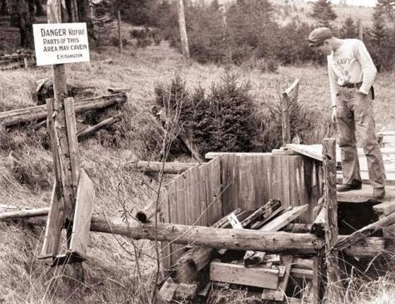 Island oak update pit money Recent discoveries