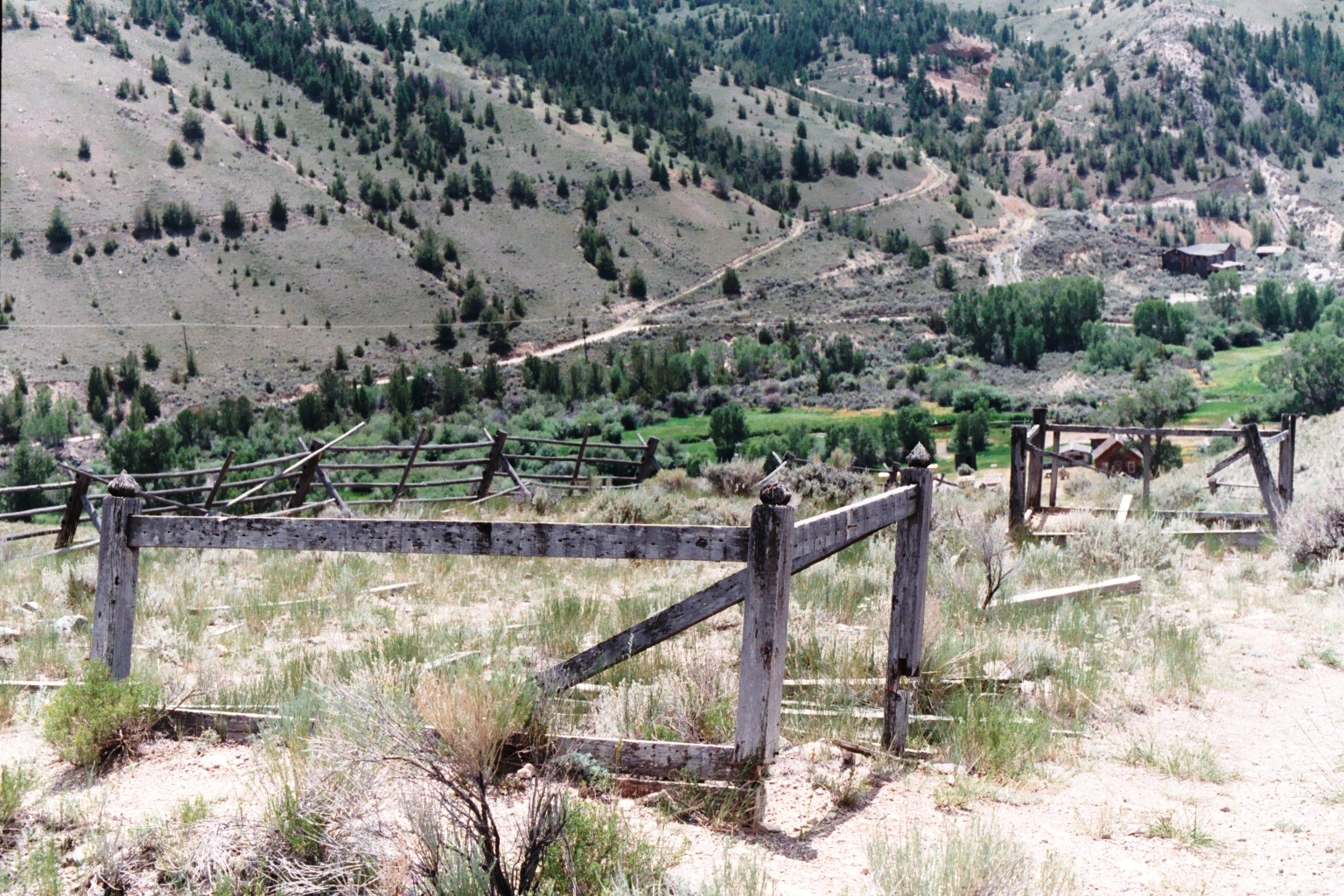 Bannack Hillside 2.JPG