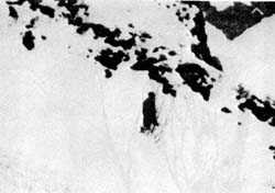 Detail: A subsequent expedition reportedly claimed that what Anthony Wooldridge actually saw was a rock formation that only resembled a humanoid shape.