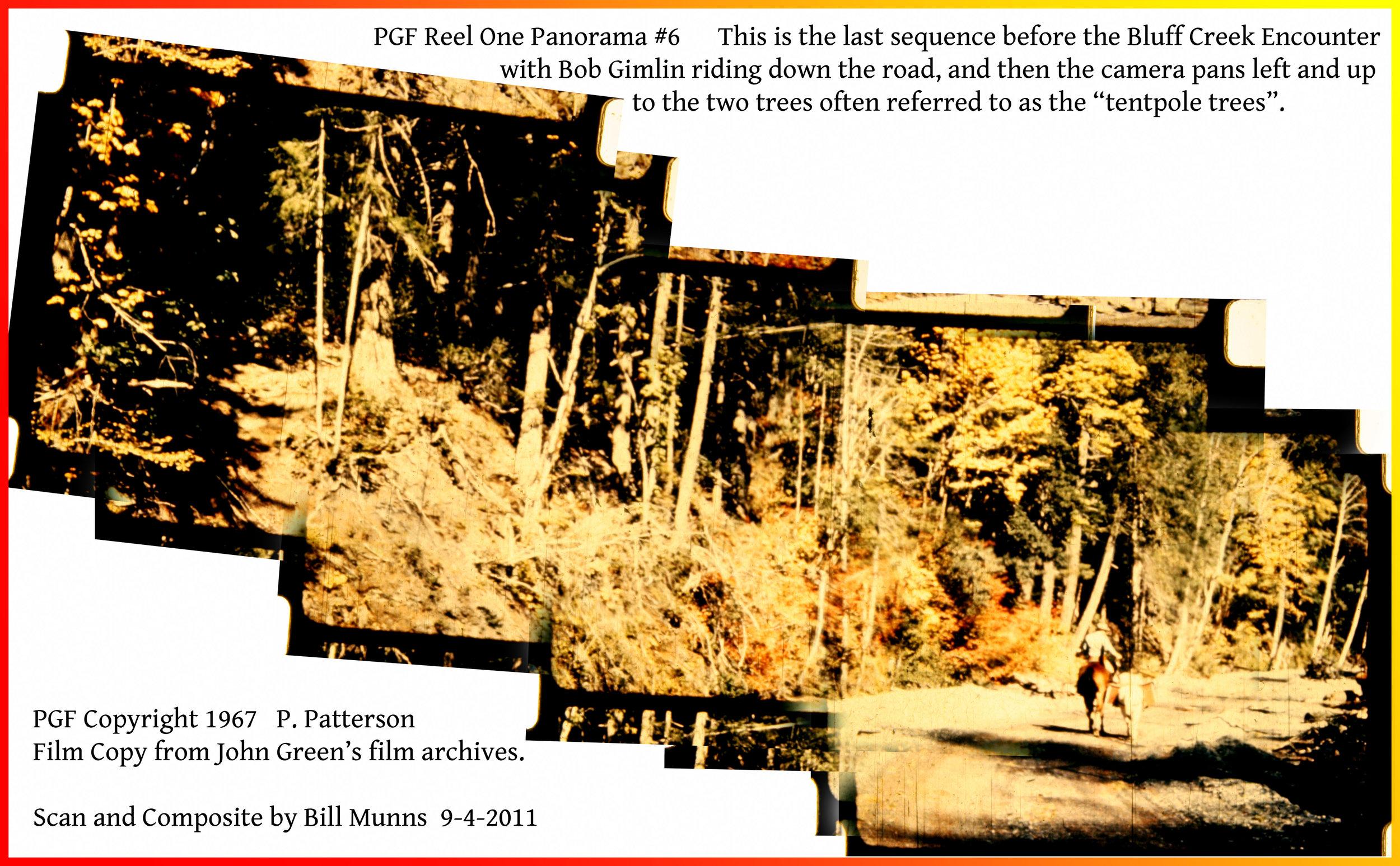 PGF Reel One Panorama #6