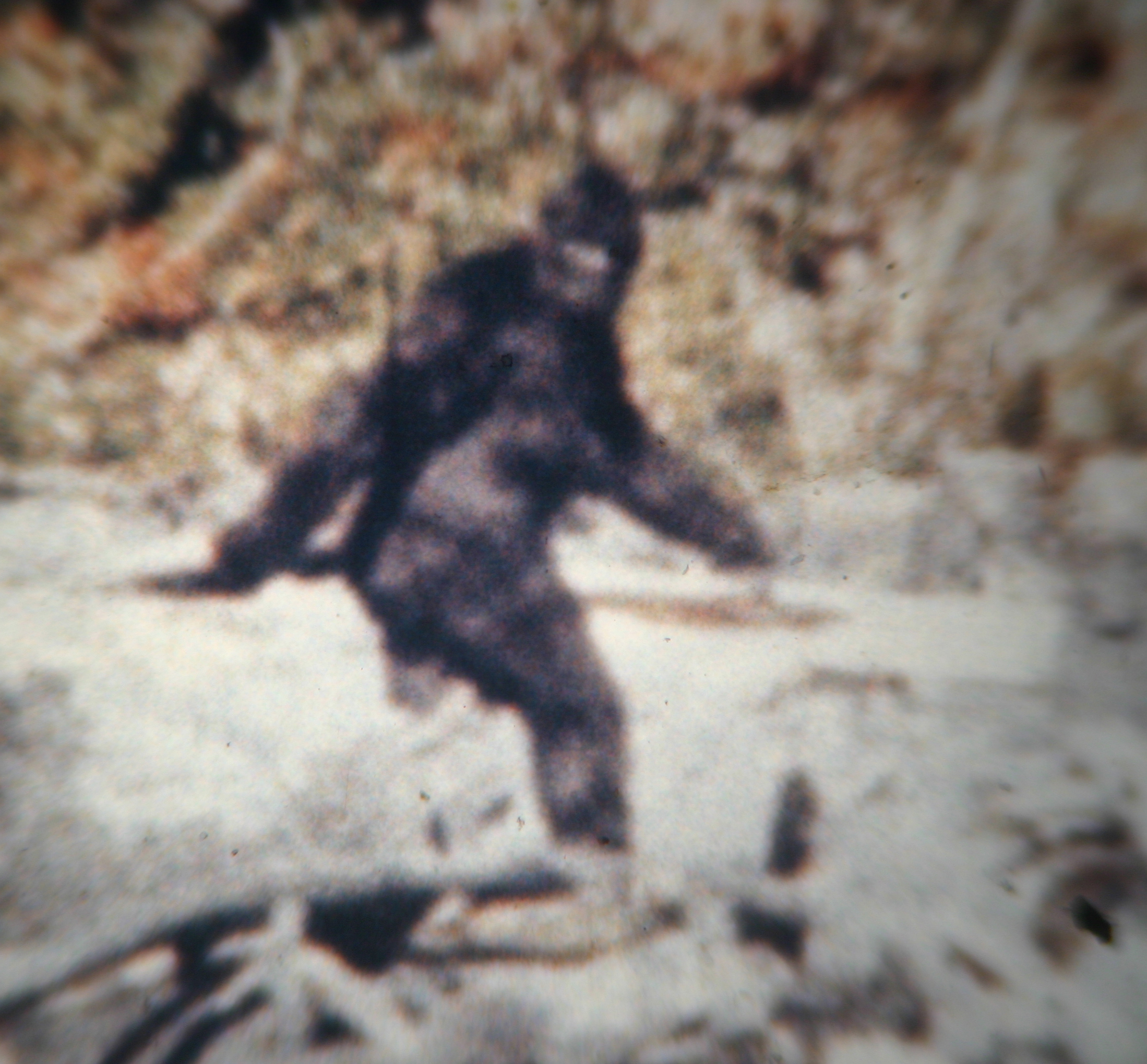 "Close up of ""Patty"" from  Bill Munns ' High Resolution film scan."