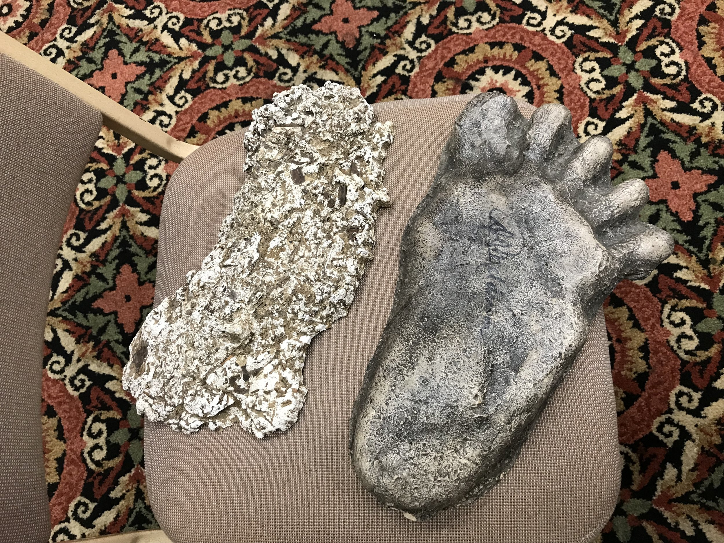 An actual Bigfoot cast alongside an original footprint cast copy that  Jeffrey  brought as props.