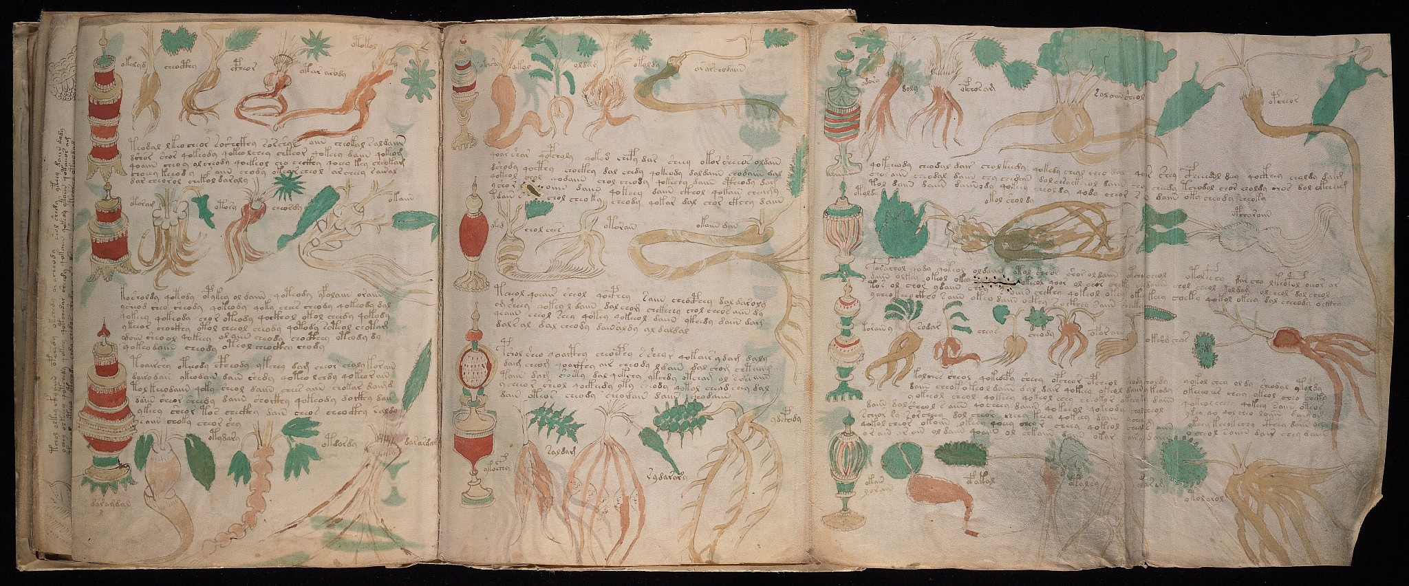 A four-page fold-out from the Voynich Manuscript, scanned by Yale University's Beinecke Rare Book and Manuscript Library
