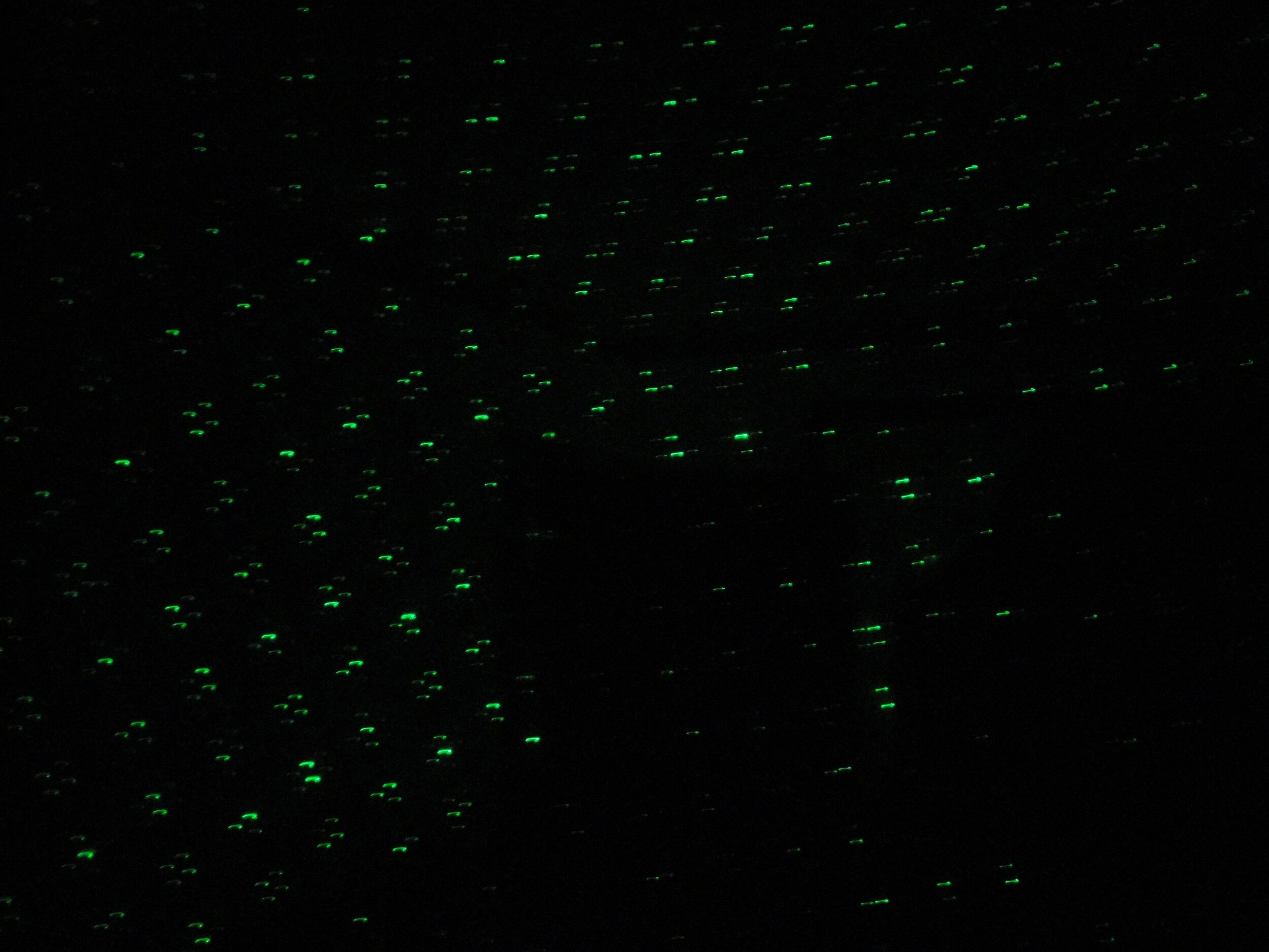 Anomaly in the laser light grid that appears to form the top half of a human shape, by blocking or absorbing the points of laser light.  Pointed at a staircase at the McKinnis-Litzenberg House.