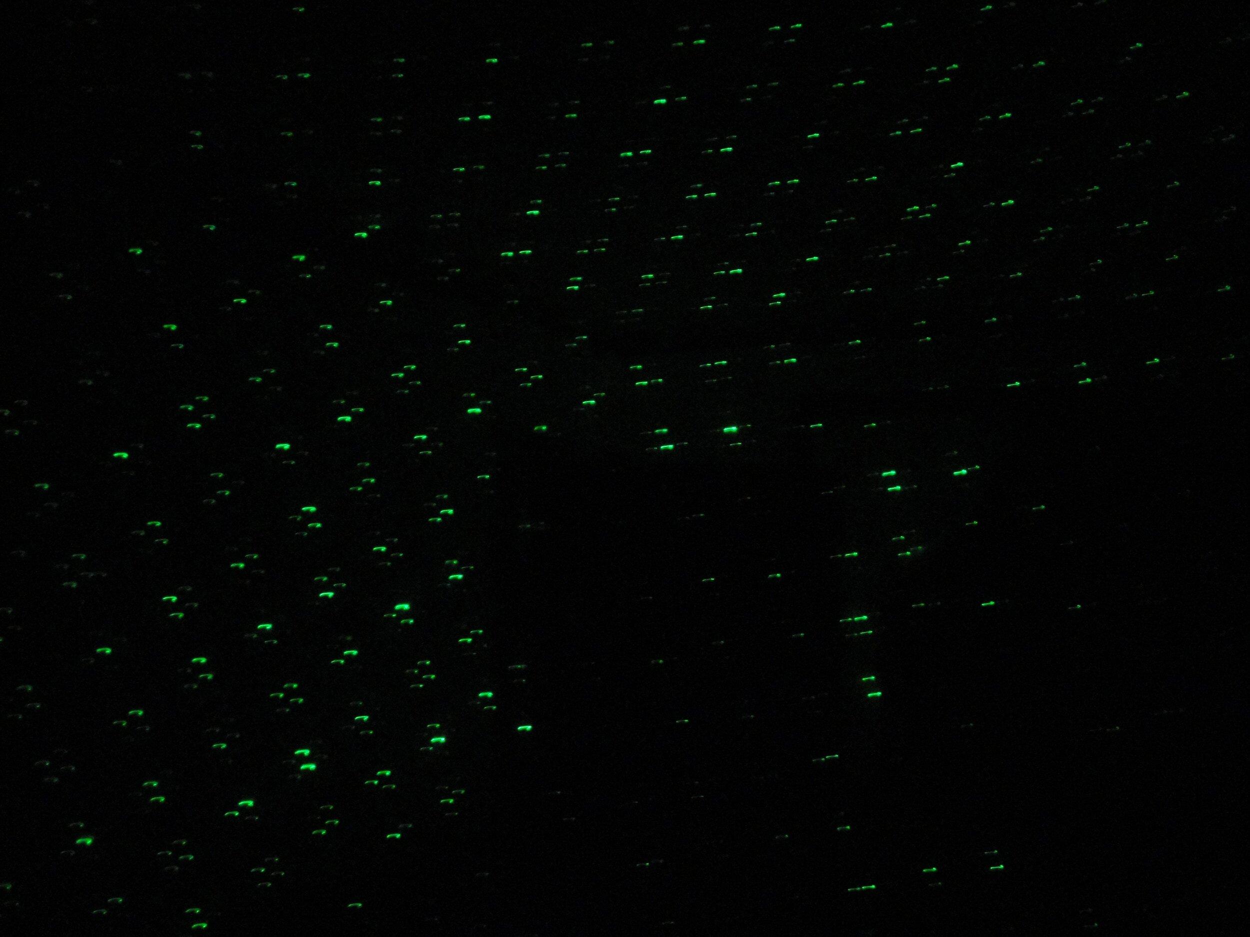 Laser Grid anomaly McKinnis House (1).jpg