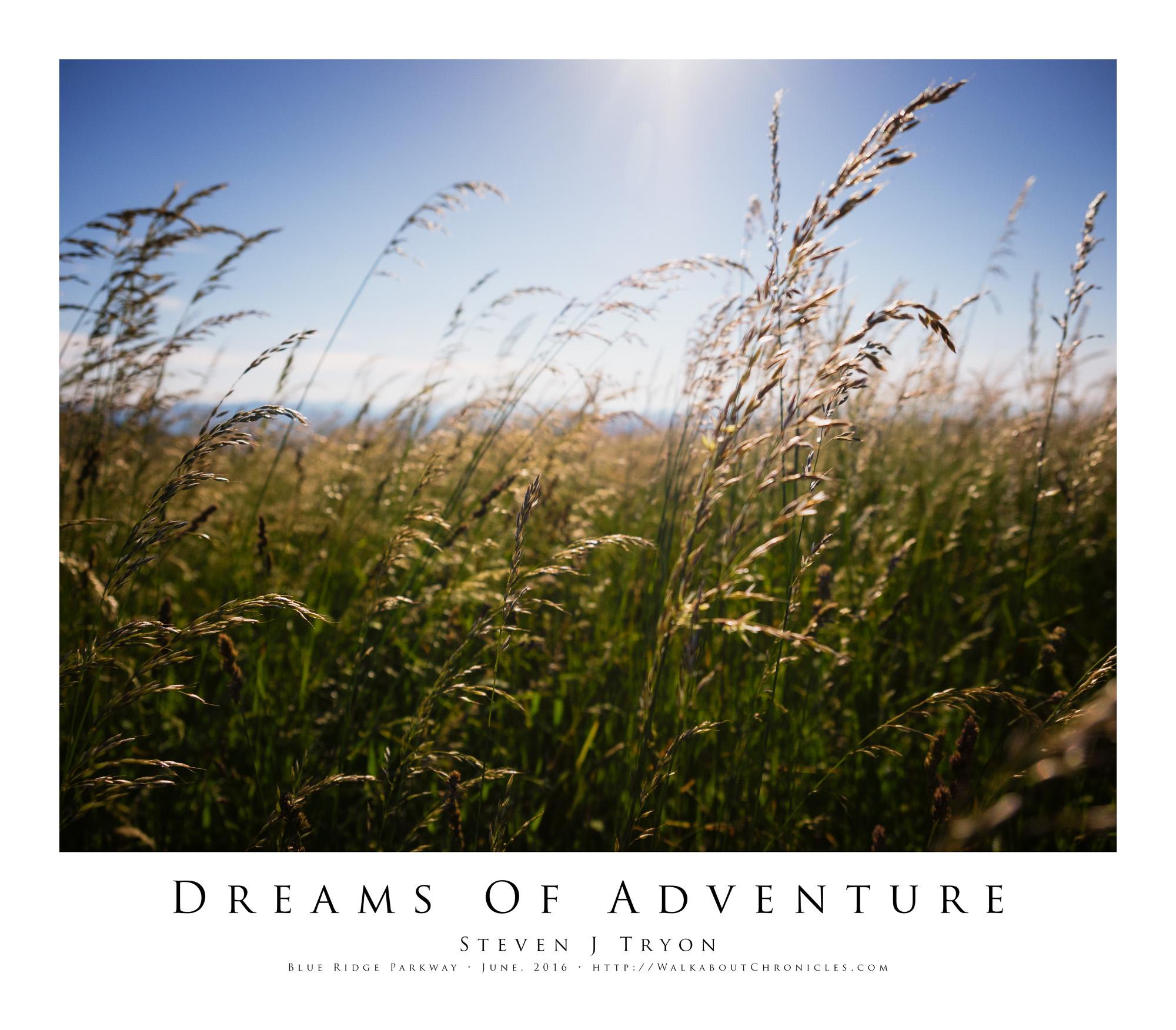 Dreams Of Adventure