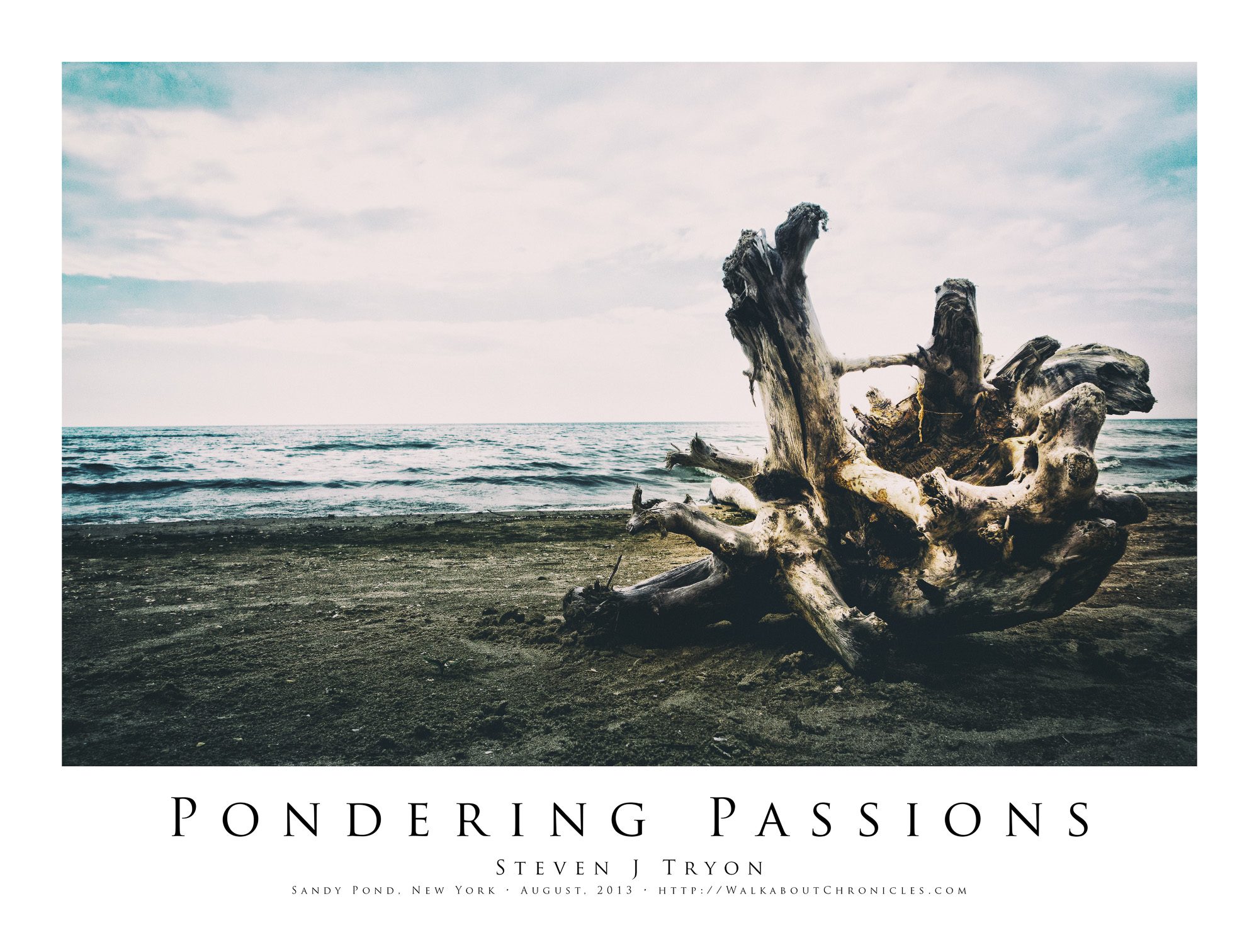 Pondering Passions