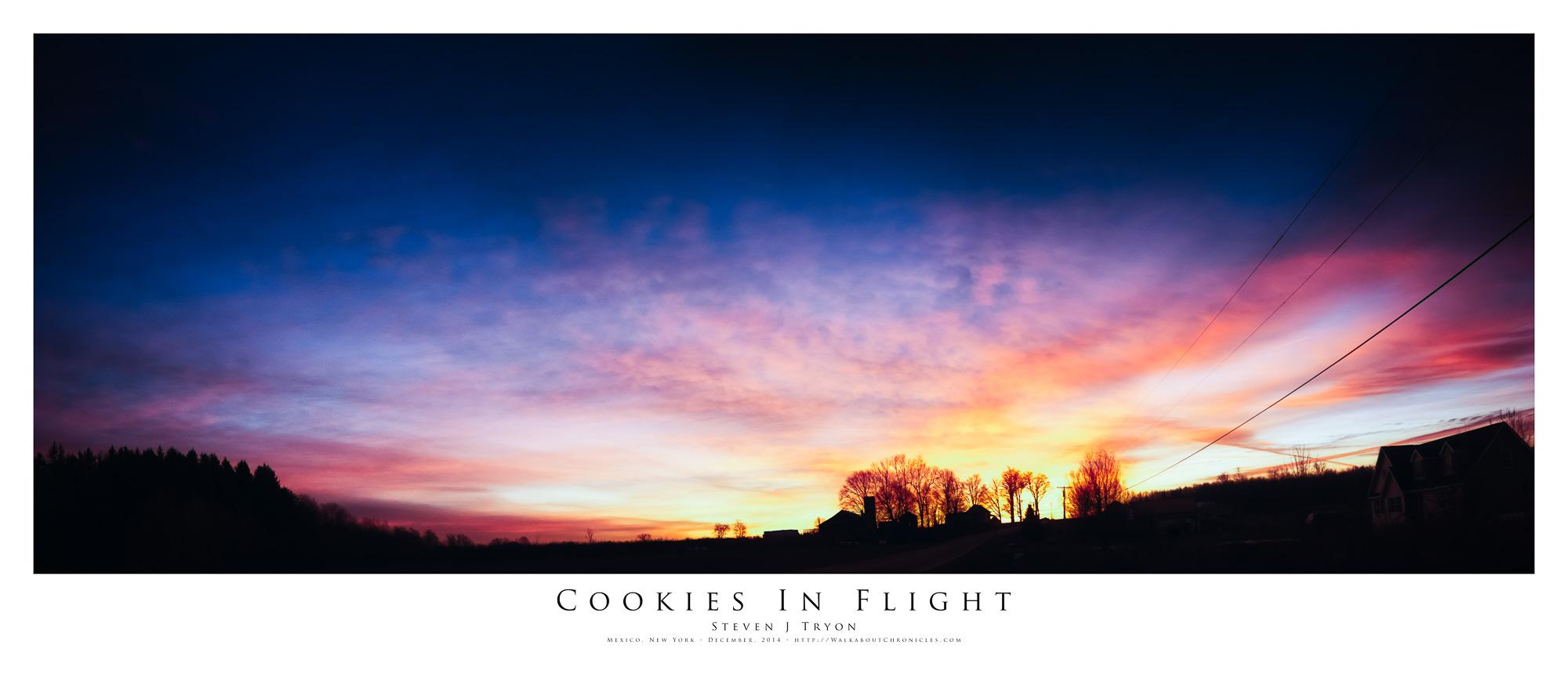 Cookies In Flight