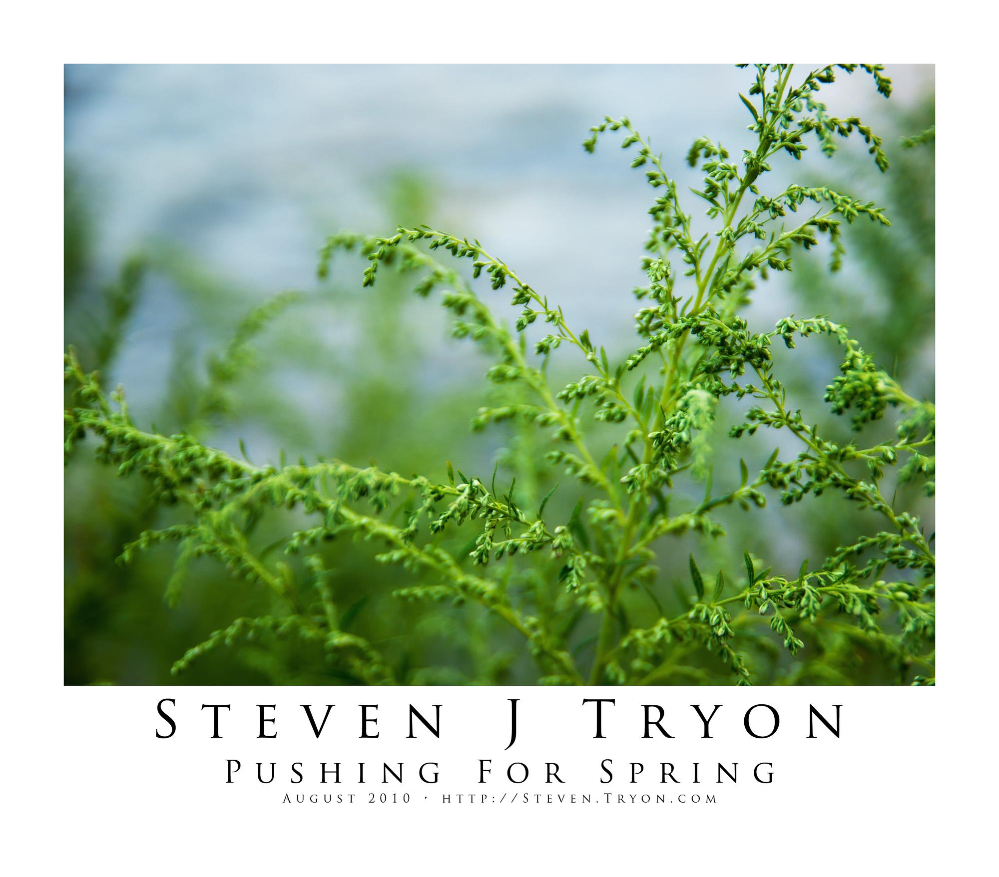 Pushing For Spring