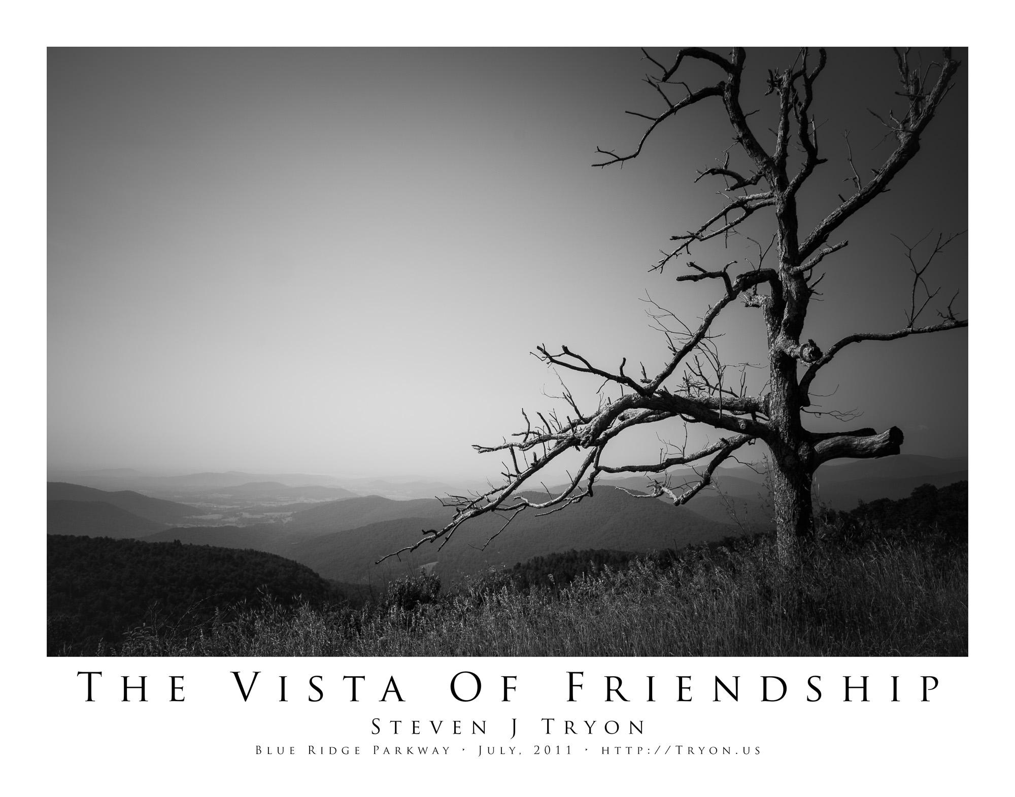 The Vista Of Friendship