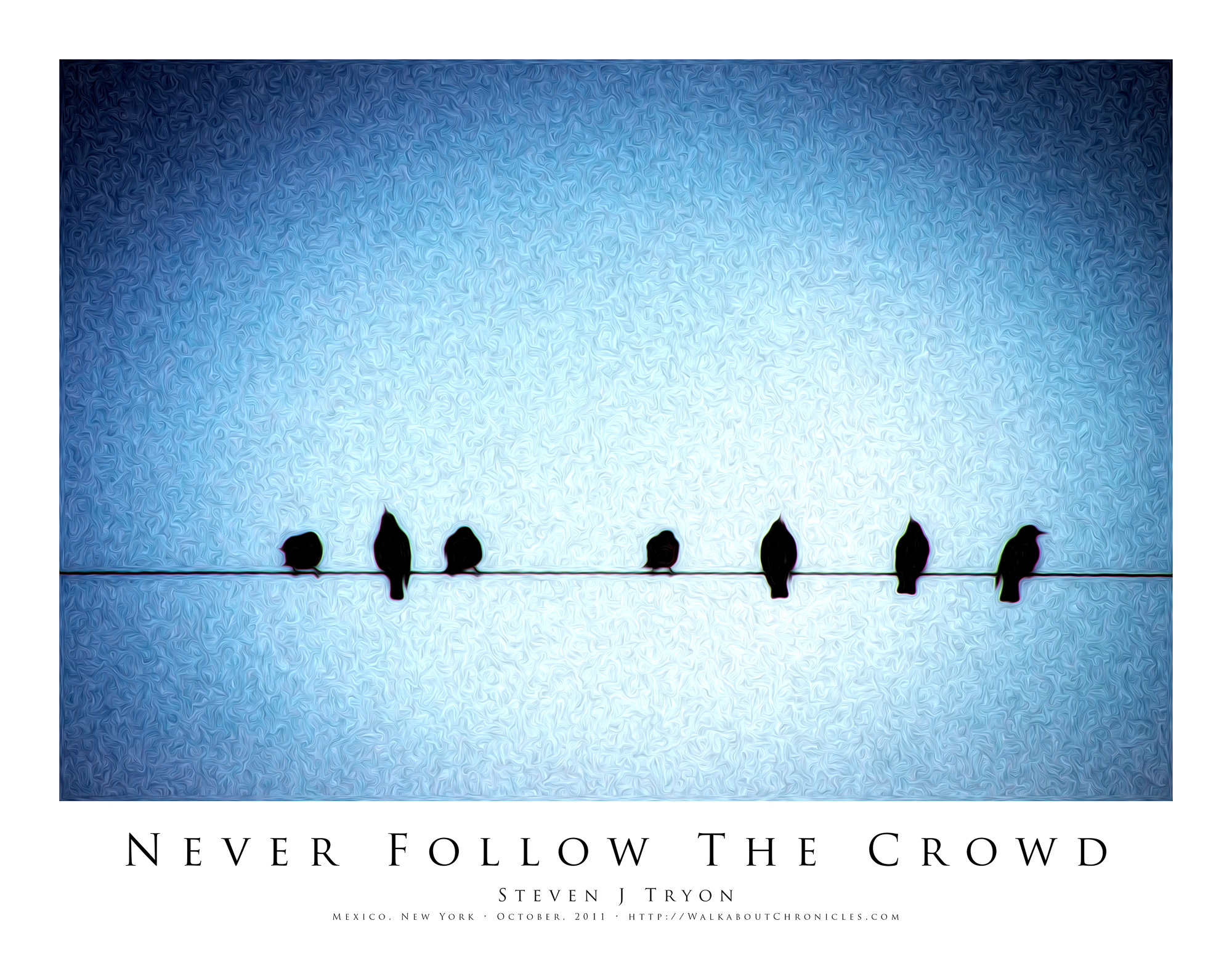Never Follow The Crowd