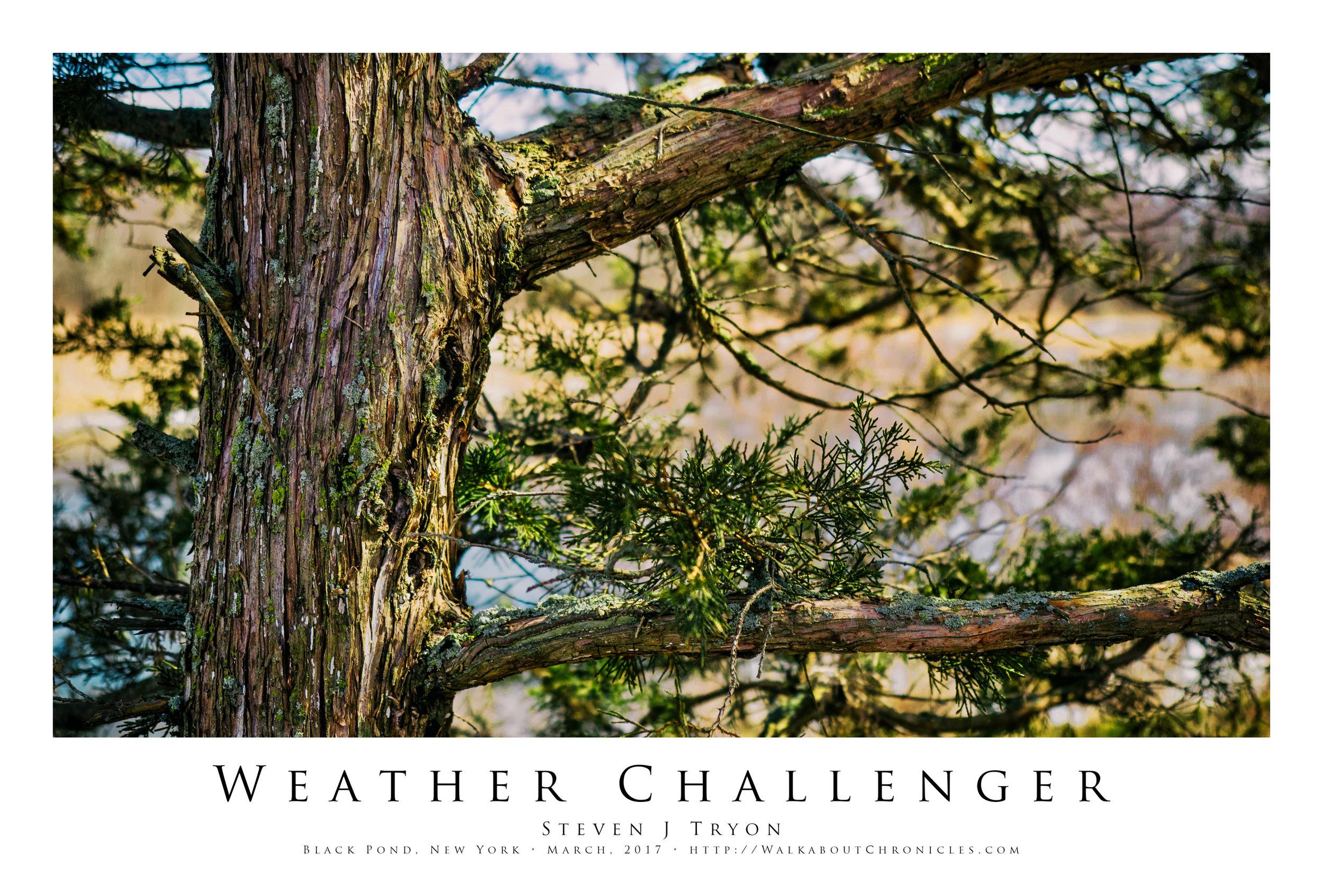 Weather Challenger