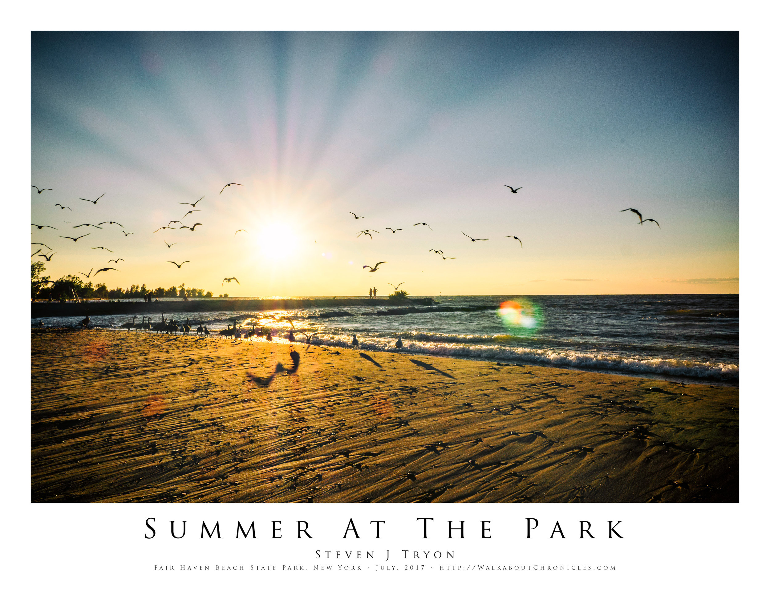 Summer At The Park