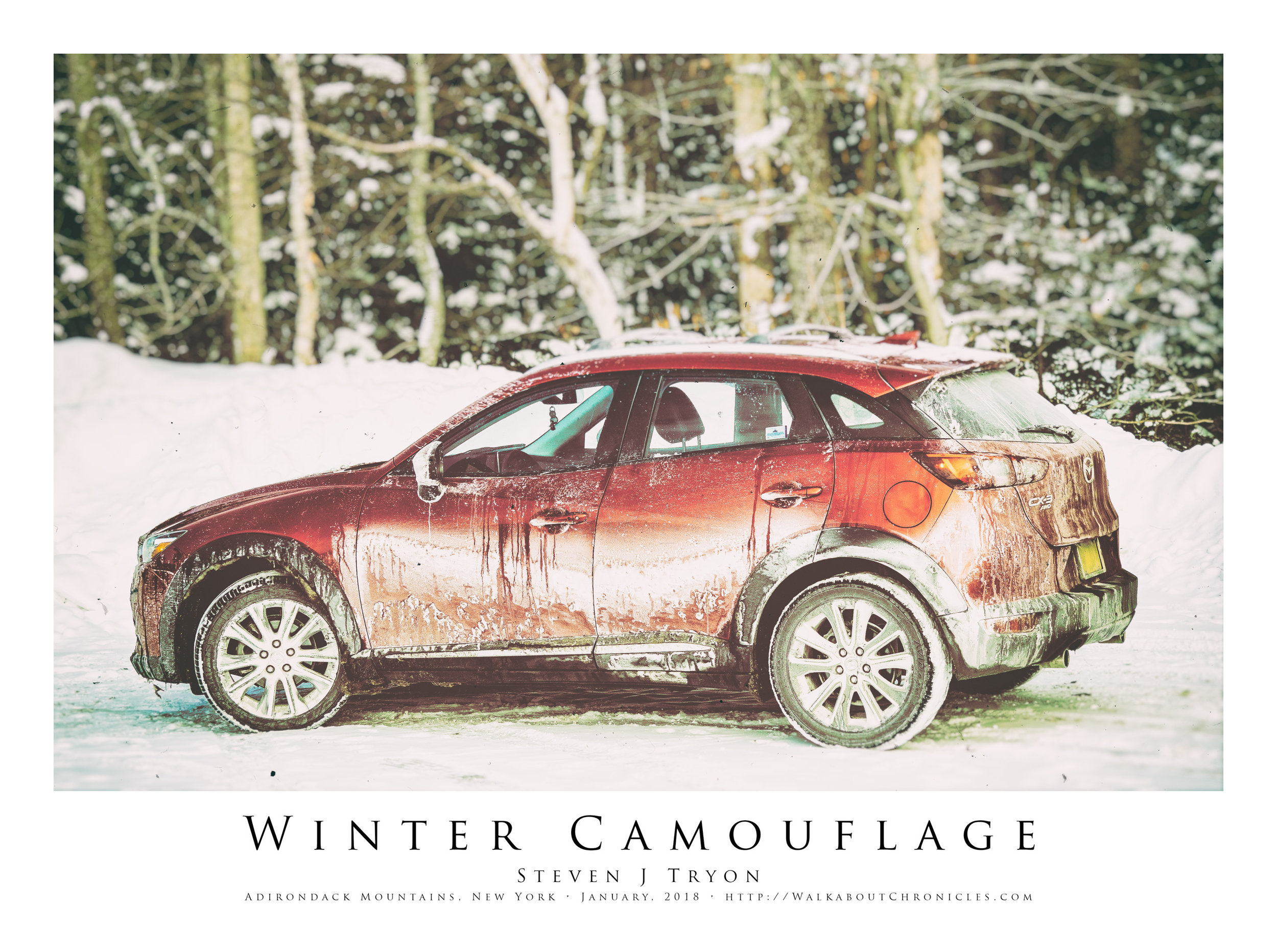Winter Camouflage